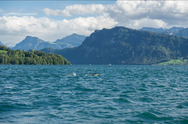 Lake Lucerne, better than swimming in Brixton Rec